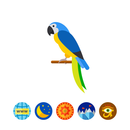macaw: Blue-and-yellow macaw icon