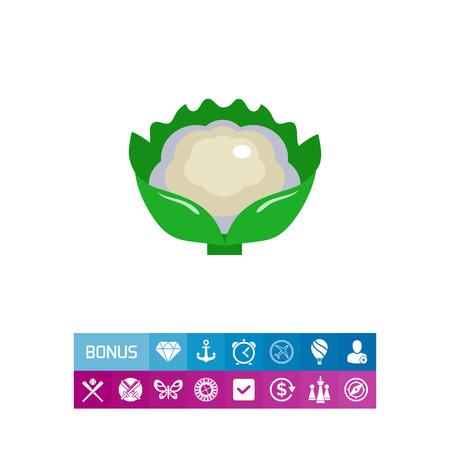 Cauliflower curd icon
