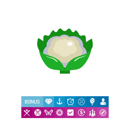 Cauliflower curd icon Banco de Imagens - 81762384