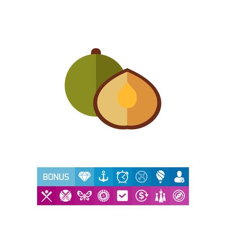 Coriander flat icon