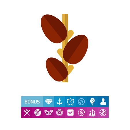 Growing coffee beans icon