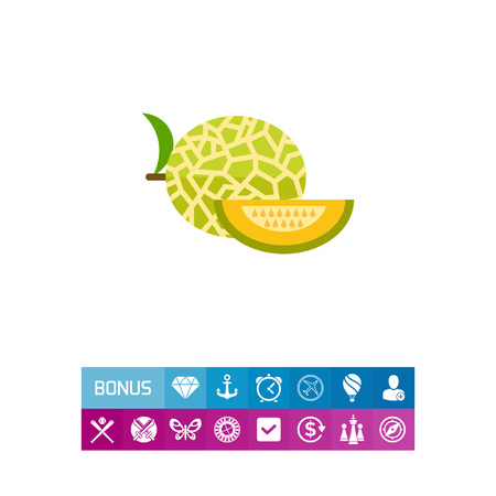 carbohydrate: Vector icon of yellow melon and slice Illustration