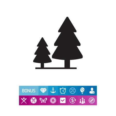 針葉樹林のサイン