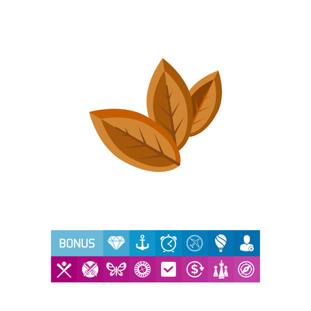 brown: Three Dry Tobacco Leaves Icon