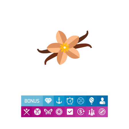 brown: Multicolored vector icon of vanilla flower and sticks
