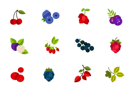 cowberry: Wild and cultivated berries icon set. Cherry Blueberry Cowberry Acai Mulberry Goji Currant Raspberry Cranberry Ripe raspberry Dogrose berry Gooseberry