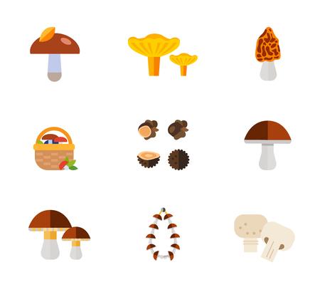morel: Mushrooms icon set