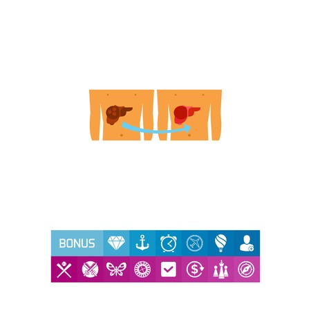 Liver transplantation vector icon