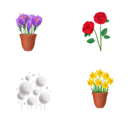Floral elements icon set