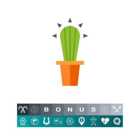 the spikes: Cactus in flower pot