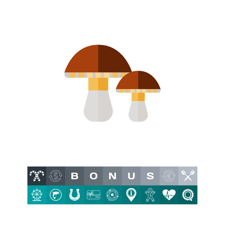 cep: Two porcini mushrooms. Edible, delicious, forest. Mushroom concept. Can be used for topics like forestry, cooking, biology, agriculture.