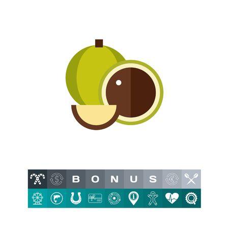 Macadamia vector icon