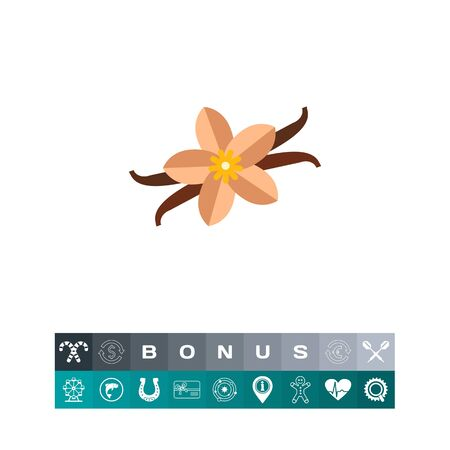 Multicolored vector icon of vanilla flower and sticks