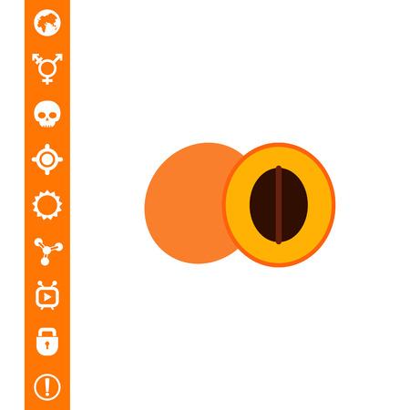 Apricot and cut apricot half Illustration