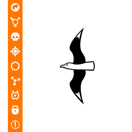 soar: Flying seagull. Summer, sea, freedom. Bird concept. Can be used for topics like zoology, vacation, tourism. Illustration