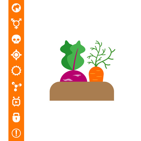 Vector icon of growing kohlrabi and carrot in soil