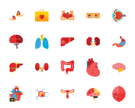 Human organs icon set. Can be used for topics like anatomy, human body, viscus, biology