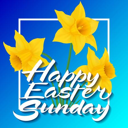 用三朵水仙花写复活节快乐