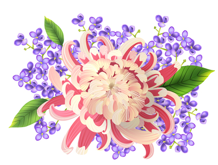 Realistic vector illustration of spring bouquet of pink aster and phlox.