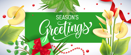 Seasons Greetings lettering in green frame with arum lilies, beads and gift box on white background Handwritten text, calligraphy. Seasonal sale concept. For posters, leaflets and brochure