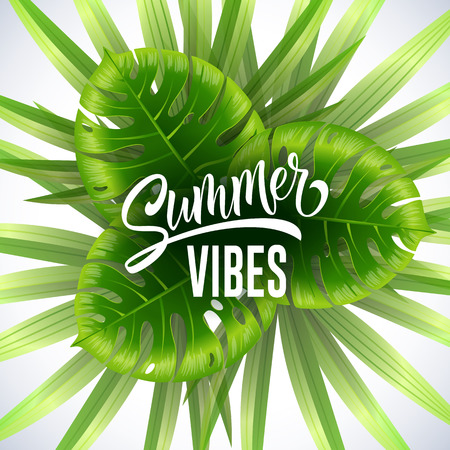 Summer vibes seasonal banner design with tropical leaves on white background. Typed and calligraphic text can be used for invitations, signs, posters.