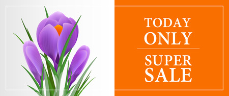 Today only super sale, thirty percent off banner template with violet snowdrop on orange and grey background. Typed text in frame can be used for flyers, signs, posters.