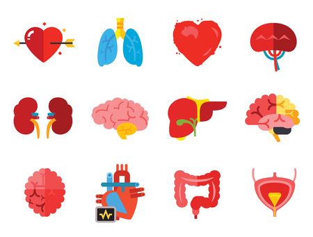 Organs Icon Set. Heart Brain Kidneys Liver Lungs Heart With Love Arrow Spleen Cerebrum Stomach Intestine Alzheimer Bladder Human Heart 스톡 콘텐츠 - 121822637