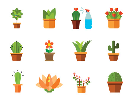 Flowers vector icons set with aloe in pot, tulip and cactus in pot. Thirteen flat icons Illustration