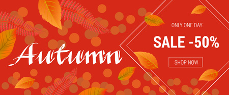 Autumn lettering for shopping banner. Only one day sale fifty percent Shop now lettering in rhombus on orange background. Illustration with lettering can be used for announcement, posters and leaflets Ilustração