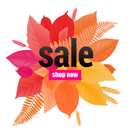 Sale shop now lettering on bright leaves. Creative inscription with autumn leaves and wheats. Illustration with lettering can be used for banner, posters and leaflets