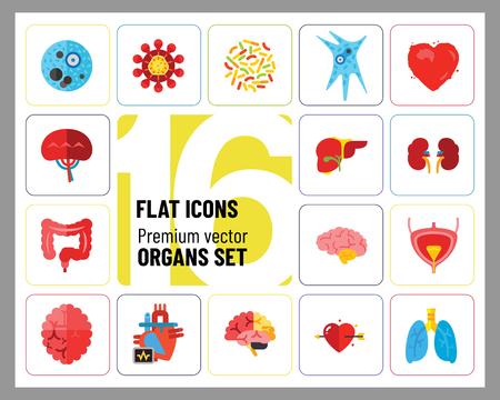 Organs Icon Set. Heart Brain Kidneys Liver Lungs Heart With Love Arrow Spleen Cerebrum Stomach Intestine Alzheimer Bladder Human Heart 스톡 콘텐츠 - 112322923