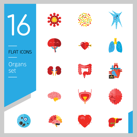 Organs Icon Set. Heart Brain Kidneys Liver Lungs Heart With Love Arrow Spleen Cerebrum Stomach Intestine Alzheimer Bladder Human Heart