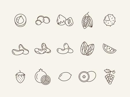 Concept d'aliments biologiques. Ensemble d'icônes de ligne sur fond blanc. Macadamia, châtaigne, noisette. Notion de noix et de fruits. L'illustration vectorielle peut être utilisée pour des sujets tels que l'alimentation saine, la nourriture, les régimes amaigrissants
