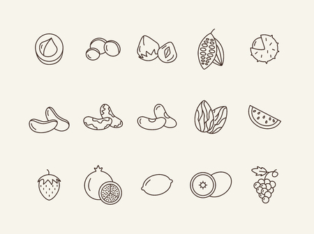Organic food concept. Set of line icons on white background. Macadamia, chestnut, hazelnut. Nuts and fruits concept. Vector illustration can be used for topics like healthy eating, food, dieting Illustration