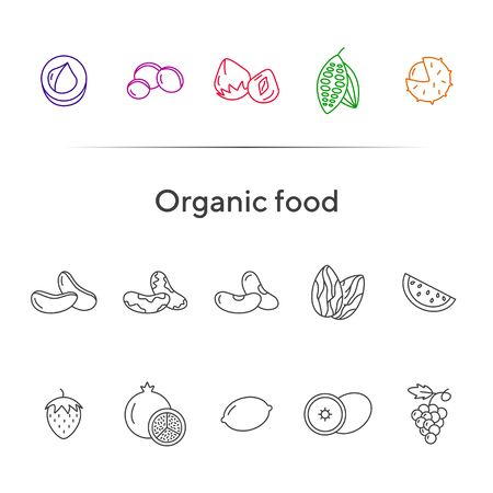 Organic food concept. Set of line icons on white background. Macadamia, chestnut, hazelnut. Nuts and fruits concept. Vector illustration can be used for topics like healthy eating, food, dieting Ilustração