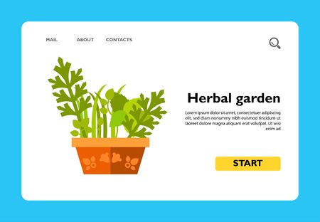Vector icon of various herbs growing in pot. Herbal garden, houseplant, spices. Herbs concept. Can be used for topics like plants, biology, health