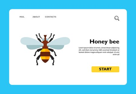 Icon of honey bee. Pollination, insect, apiary. Bee garden concept. Can be used for topics like biology, summer, nature Ilustrace