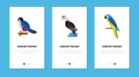 Colorful bird flat icon set. Tocororo, condor, macaw isolated sign pack. Wildlife and nature concept.