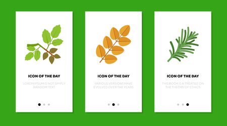 Twigs flat icon set. Yellow, green, withered branches, isolated sign pack. Botany, plants, trees, park concept. Vector illustration symbol elements for web design