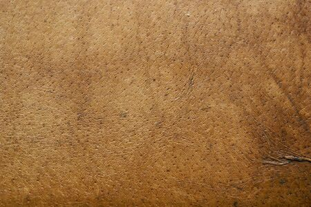 cowhide: leather texture background