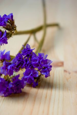 dried blue flowers on wooden board close up photo
