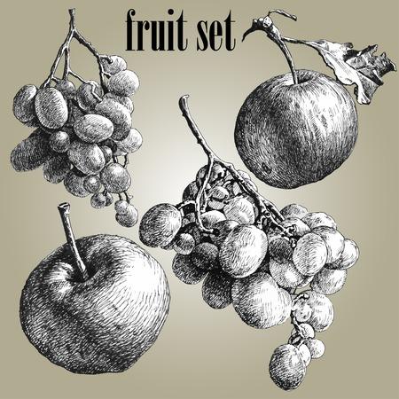 포도와 사과 그림입니다. 과일 세트.