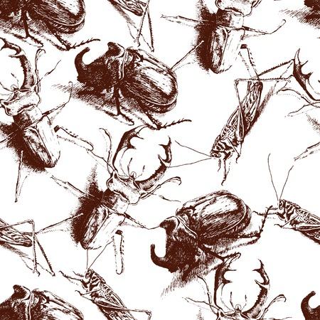 hopper: Seamless pattern with different realistic bugs Illustration