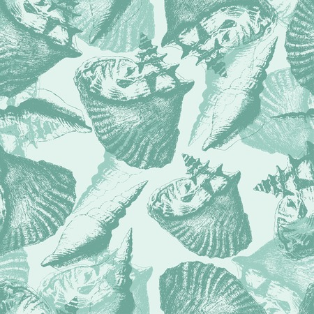 Seamless pattern with different shells. hand draw. Vector