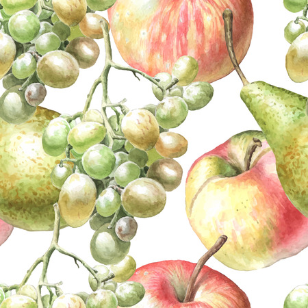 vine pear: Seamless pattern with watercolor fruits. Hand drawn.
