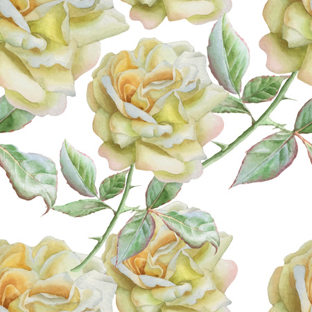 wallpaper floral: Seamless pattern with watercolor roses. Vector. Hand drawn.