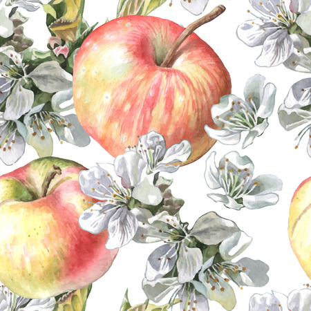 Apples and flowers. Watercolor. Vector. Hand drawn.