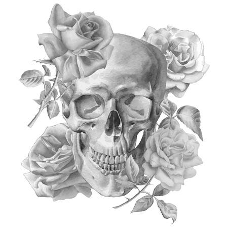 calavera pirata: Ilustración monocromática con el cráneo y las rosas. Acuarela. Vector. Dibujado a mano.
