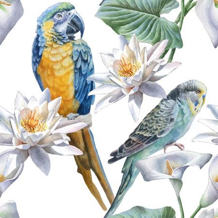 selva: Patrón sin fisuras con flores y pájaros. Dibujado a mano de la acuarela. Vectores