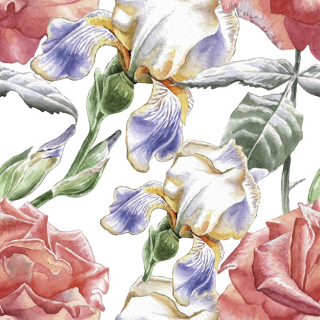 hand drawn rose: Seamless pattern with watercolor flowers. Iris. Rose Hand drawn. Illustration